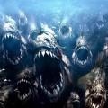 Рыбы убийцы